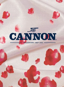 cover_cannon